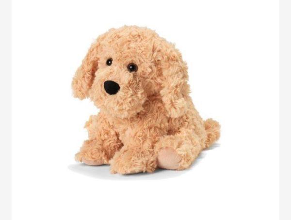 13″ Warmies – Golden Dog