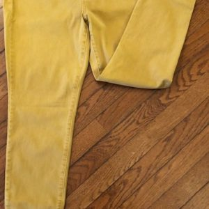 Harvest Gold Jeans by Charlie B on Shop Iowa