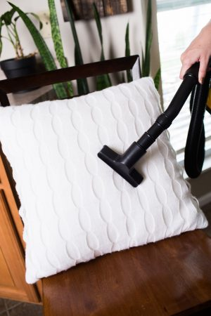 Riccar Supra Quik Portable Canister Vacuum