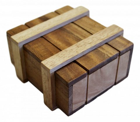 Brain Teaser Wooden Puzzles & Games