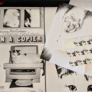 Cat On A Copier