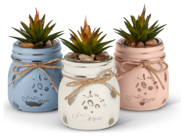 Mini Mason Jar Succulents