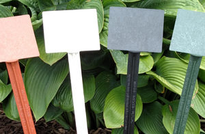 24″ BioMarkers Plant Label Garden Stake Tags- Angled Top