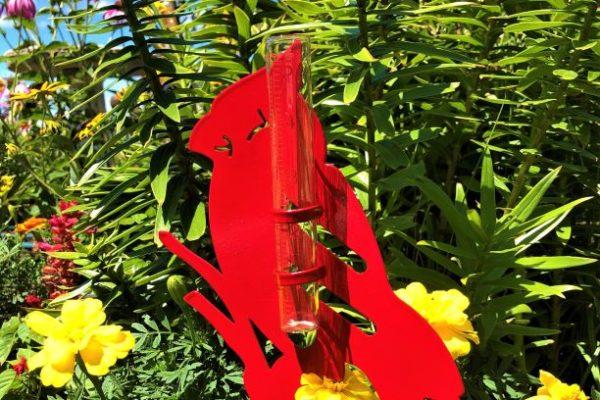 Cardinal Rain Gauge