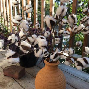Faux cotton pick branches