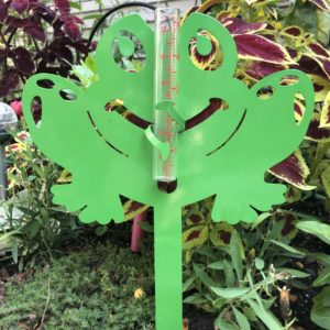 photo of Green Frog Rain Gauge, Hackberry Tree, Shop Iowa
