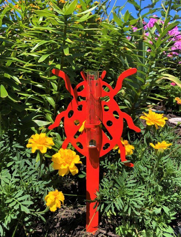 Ladybug Rain Gauge
