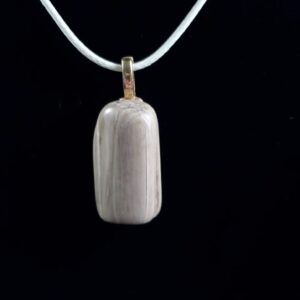 Cord Necklace-Iowa Petrified Wood