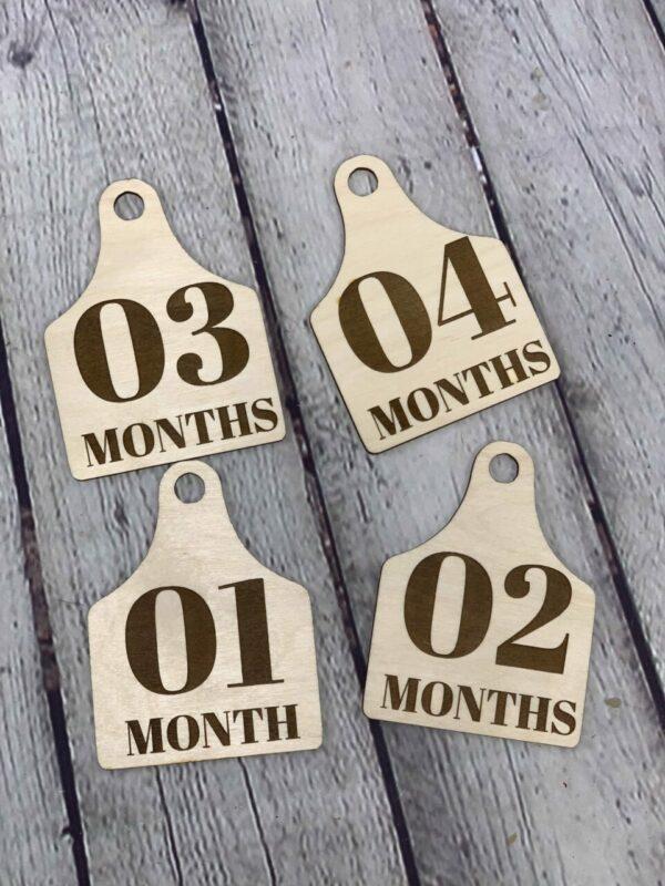 Farm Animal Tag Monthly Milestone Photo Discs