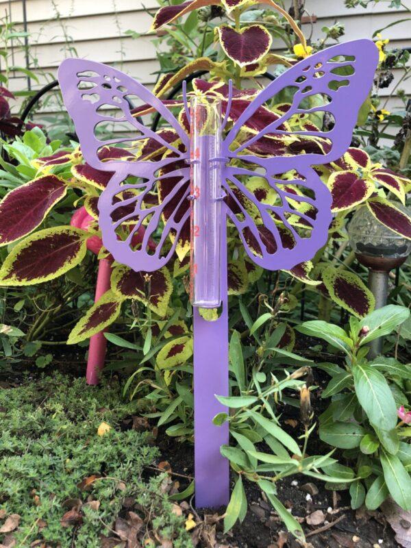 Butterfly Rain Gauge