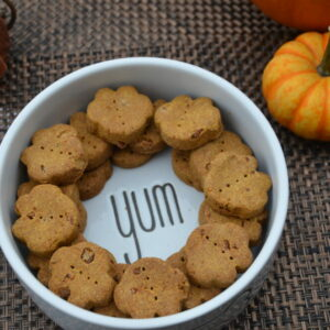 Pumpkin Variety Pack Dog Treats
