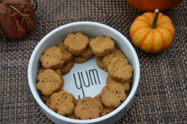Pumpkin Variety Pack Dog Treats