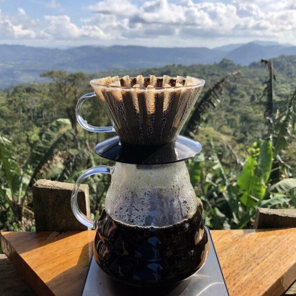 Gold Mountain Sample Flight – 3 Direct Relationship Nicaraguan Coffees