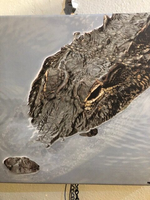The Gator Canvas by Sue Moss