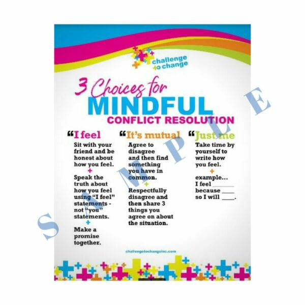 3 Mindful Choices Poster