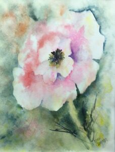 photo of Almost Pink Original Watercolor Painting, Nancy Cameron Art, Shop Iowa