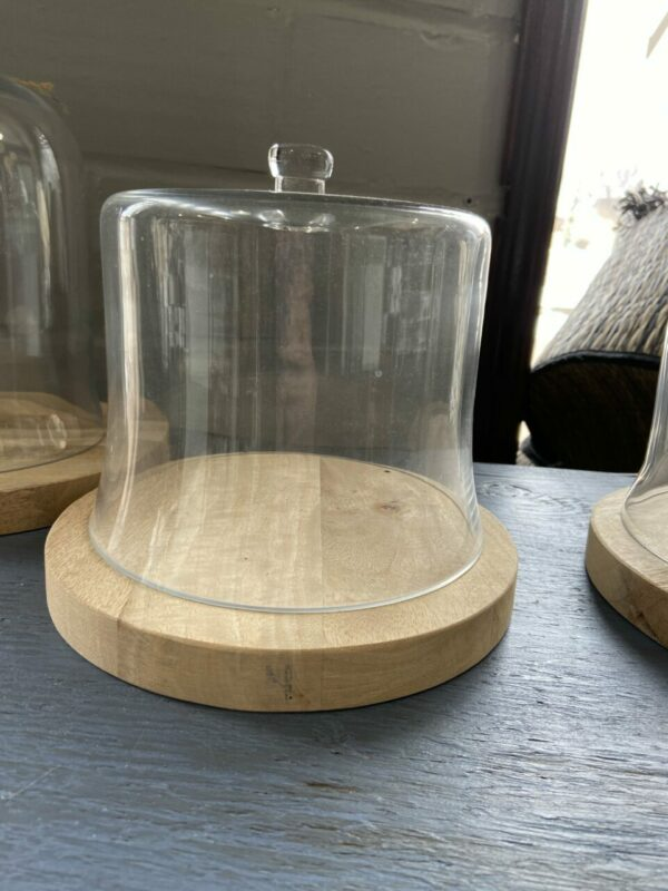 Glass Cloche with Wood Base