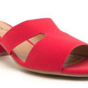 Katz Red Slide