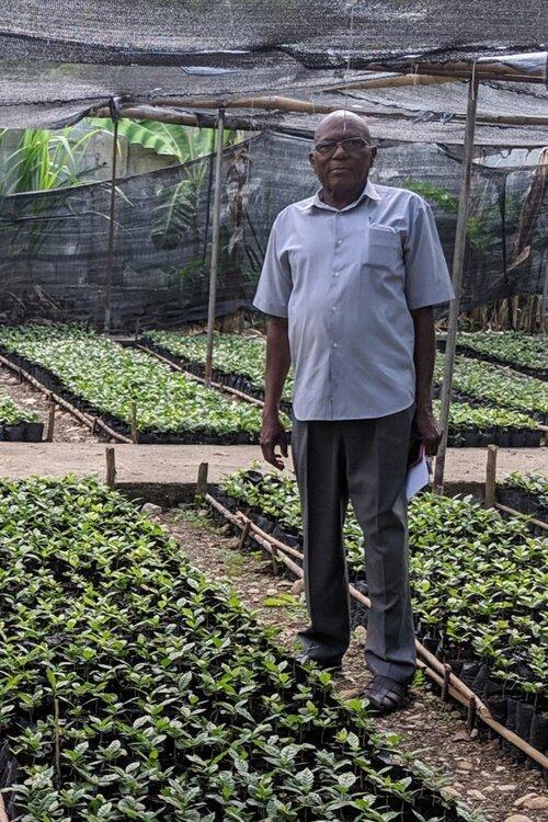 Organic Haitian Blue Mountain