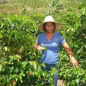 Colombian  – Women Coffee Producers