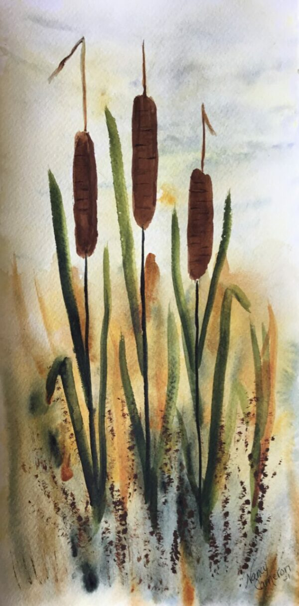 Cattails by the Roadside Original Watercolor