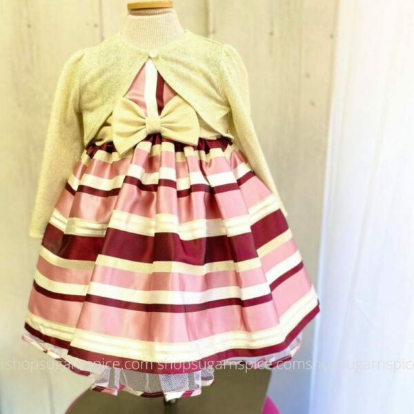 mauve and burgundy stripe dress w/ cardigan