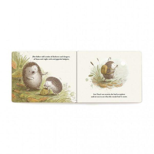 hedgehog's big adventure book